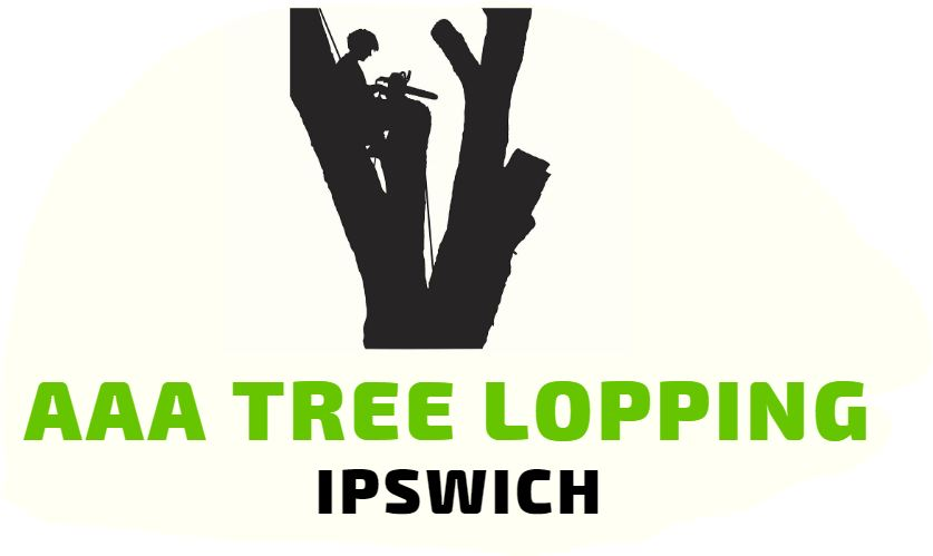 AAA Tree Lopping Ipswich