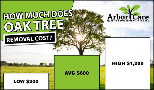 Estimated Tree Care Cost