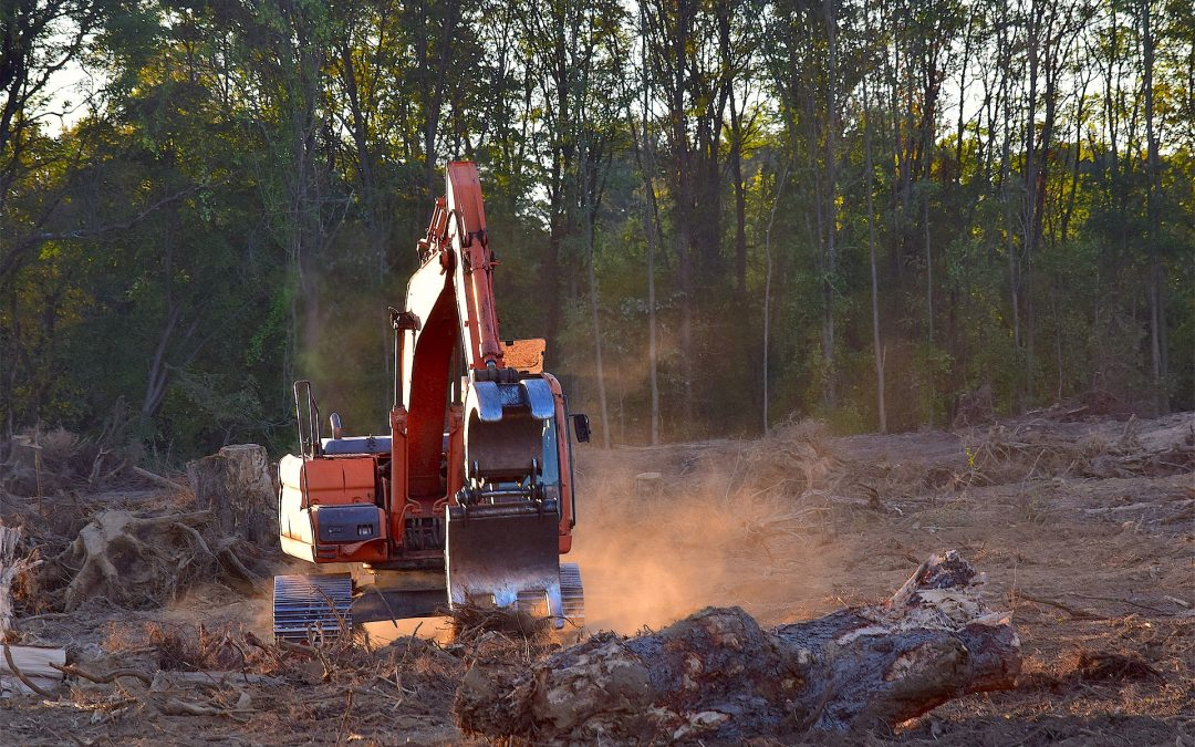 3 Land Clearing Tips