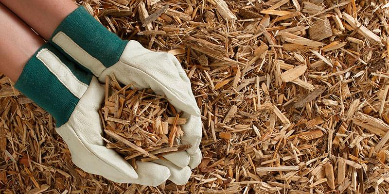 What Can Wood Chips be Used for?