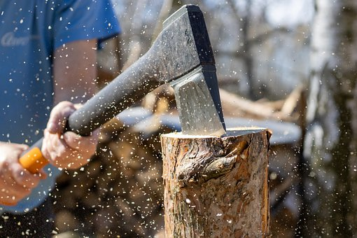 Different Types of Important Tree Cutting Tools